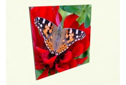 Дизайн обогреватель 475 Вт бабочка
