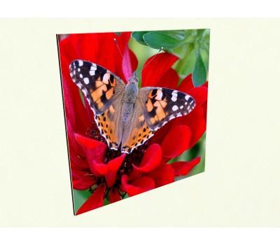 Керамический обогреватель c фото бабочка